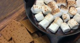 The Ultimate Guide To The Marshmallow Test And Delayed Gratification