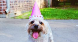 10 Money Questions for Reflections on Your Birthday